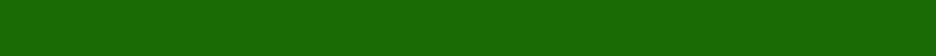 Green Grass Divider